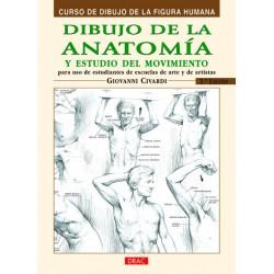 Dibuix De L'Anatomia