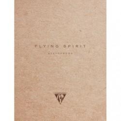 10 x 14 - Flying